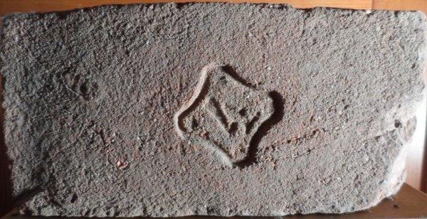 4 - nalezena v Kunovicích 14.května 2011. Rozměr 28x13,5x6.